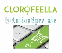 E-commerce: la testimonianza di due ex-allieve